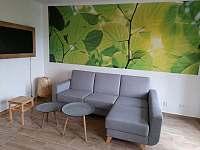 Obývací pokoj (součást kuchyně) Apartmán 2 - Jenišov