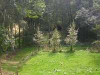 rozsáhlá zahrada