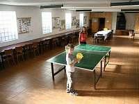 stolní tenis k dispozici - apartmán ubytování Strmilov