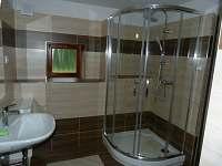 koupelna apartmán 1 - k pronájmu Dvory nad Lužnicí