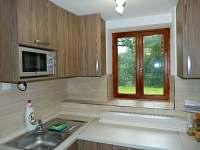 kuchyňka apartmán1 - Dvory nad Lužnicí