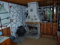 Staňkov - chata k pronájmu - 4