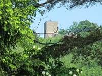Choustník - chata k pronájmu - 5