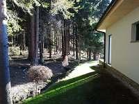 Apartmány LIPNOczech výhled do nádherného lesa
