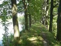 Hráz rybníka, na procházky i koupání