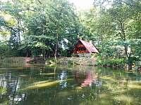 Pohled z řeky - chata k pronájmu Lužnice