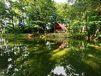 pohled z řeky Lužnice -