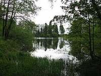 rybník Amerika vzdálený 2km, kde je možné zadarmo rybařit - Kunžak