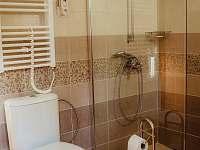 Koupelna 1c - pronájem chalupy Krejčovice
