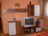 Skalice - apartmán k pronájmu - 8