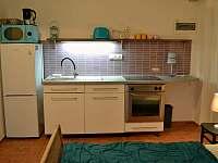 Apartmán č.1 v přízemí, s kuchyňkou a koupelnou s WC - Bavorov