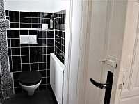 Samostatné WC v přízemí - chalupa k pronajmutí Bavorov