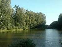Dačice - Borek - chalupa k pronajmutí - 14