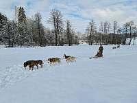 Zima_2021 - pronájem chalupy Benešov nad Černou