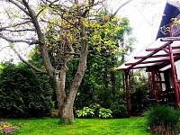 Exteriér - vchod do penzionu - chata ubytování Větřní