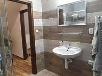Koupelna s WC - chalupa k pronajmutí Hosty