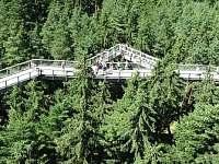 Stezka korunami stromů
