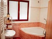 Dům se 2 ložnicemi - pronájem vily Nová Bystřice
