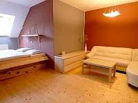 Hracholusky - apartmán k pronájmu - 3