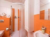 Apartmány u Zlaté rybky - apartmán - 13 Staňkov
