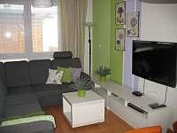 Obývák s rozkládací sedačkou, dveřmi přímo na terasu - apartmán k pronajmutí Frymburk