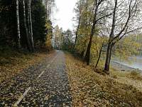 Podzimní procházka po cyklostezce Frymburk - Lipno nad Vltavou -