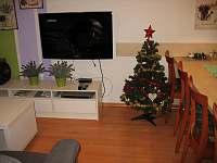 Vánoční výzdoba při vánočním pobytu - apartmán k pronájmu Frymburk