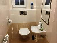 WC - vila k pronájmu Frymburk