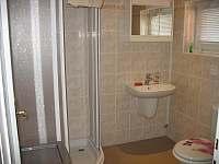 Koupelna - apartmán k pronájmu Frymburk