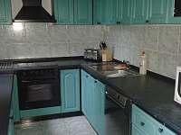 Kuchyň s myčkou, mikrovlnkou, trouba se sporákem, 2 ledničky - Planá nad Lužnicí