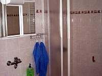 Třeboň - Břilice - apartmán k pronájmu - 4