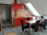 Apartmán červený - kuchyně - rekreační dům k pronájmu Nová Včelnice