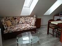 Apartmán žlutý - přistýlka v obytné kuchyni - Nová Včelnice