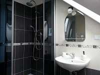 Byt hnědý - koupelna se sprchovým koutem