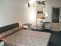 Ubytování s tenisem - apartmán - 17 Jindřichův Hradec - Otín
