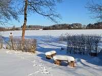 Výhled na zamrzlý rybník ze zahrady
