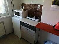Apartmán U Krumlova - apartmán k pronájmu - 15 Kájov