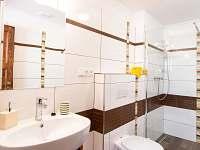 AP2 koupelna - pronájem apartmánu Mnišek