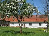 Chalupa k pronájmu - Horní Světlá Jižní Čechy