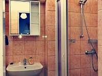 Koupelna - apartmán ubytování Bujanov