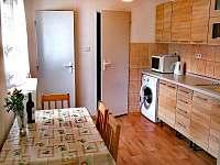 Kuchyň - pronájem apartmánu Bujanov