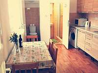 Kuchyň a sociální zařízení - apartmán k pronájmu Bujanov