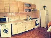 Plně vybavená kuchyň - apartmán ubytování Bujanov