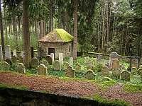 Židovský hřbitov Český Rudolec -