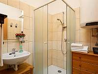 Koupelna se sprchou a umyvadlem - chalupa k pronájmu Sudoměřice u Bechyně