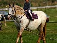 Ranch Veselíčko - chalupa k pronájmu - 22 Slavonice