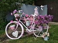 dekorace na zahradě - chalupa k pronajmutí Dynín - Lhota