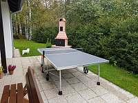 stolní tenis - chata k pronajmutí Slupečná