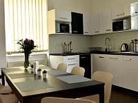 Kuchyň - apartmán k pronajmutí Chlum u Třeboně