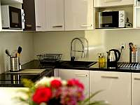 Kuchyň - pronájem apartmánu Chlum u Třeboně